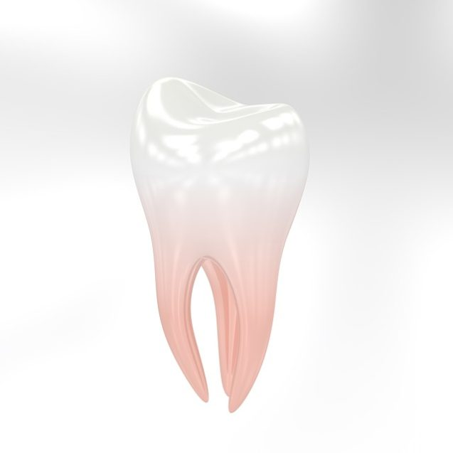 Boise Dental: What You Need To Know About Root Canals